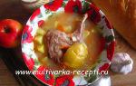 Суп из кролика с яблоком в мультиварке