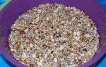 Домашние козинаки рецепт из семечек и арахиса