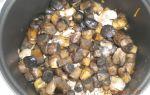Тушеные куриные желудки с грибами в мультиварке